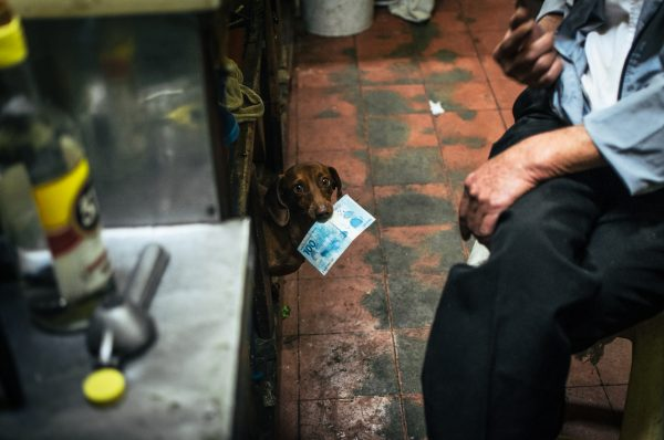 dog with money Raphael Valverde fotogenik collective street photography
